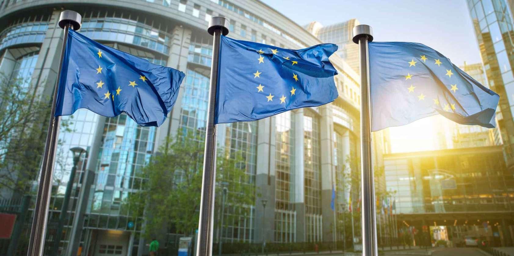 European Union Programs Consulting